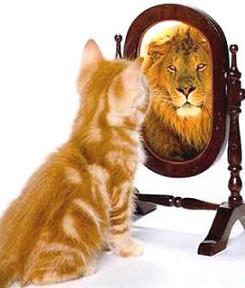 Confiance en Soi, révellez le lion qui est en vous