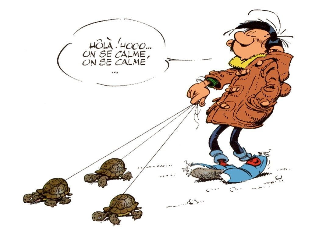 gaston_lagaffe_tortues